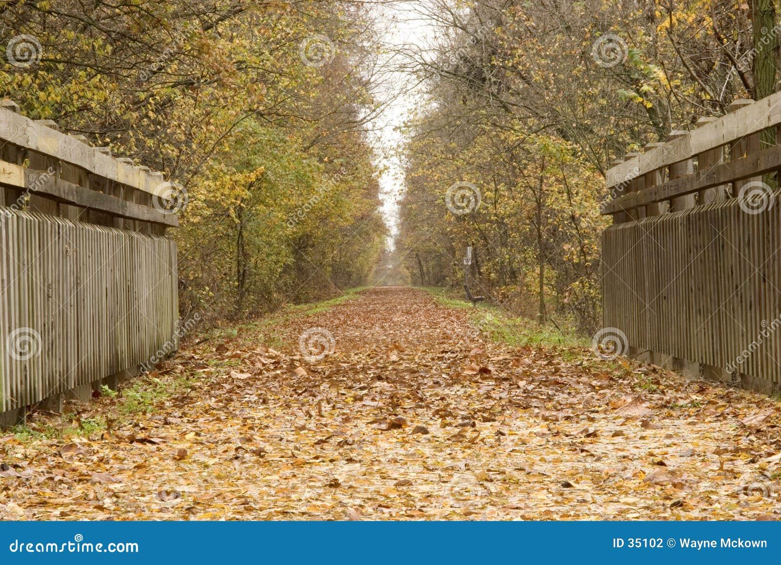 Katy trail för bro