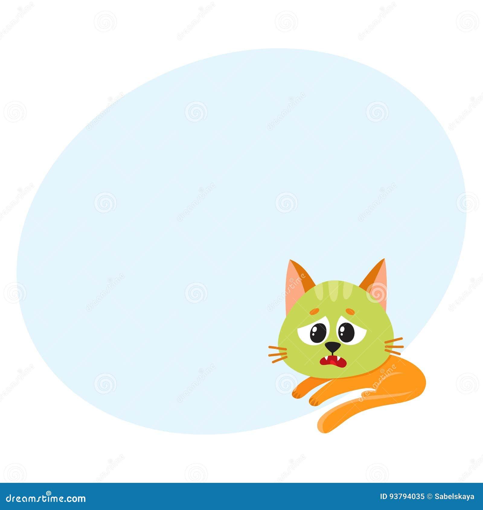Katze Das Kätzchen Das Krank Sich Fühlt Um Zu Vertragen Grünen