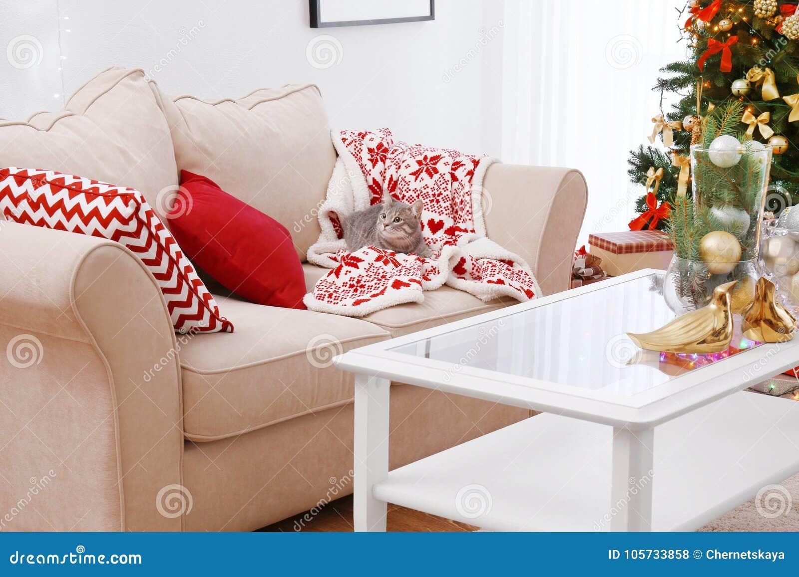 Katze, die auf Sofa im Raum verziert für Weihnachten liegt