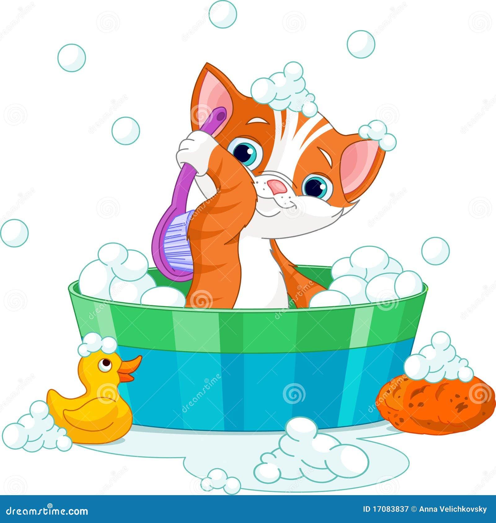Katze, die ein Bad hat