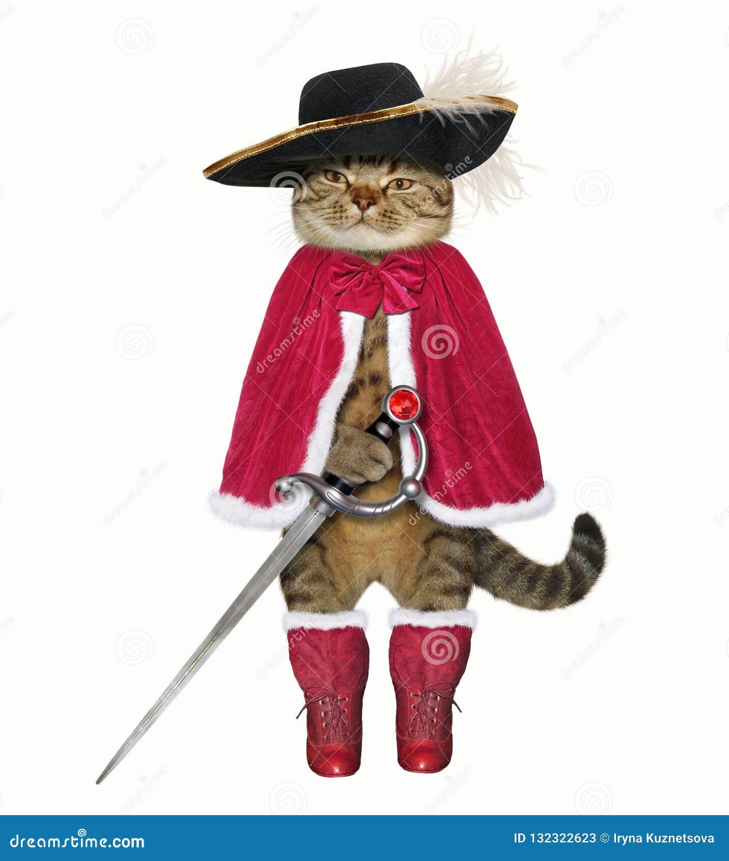 Katze in einem roten Mantel mit einer Klinge