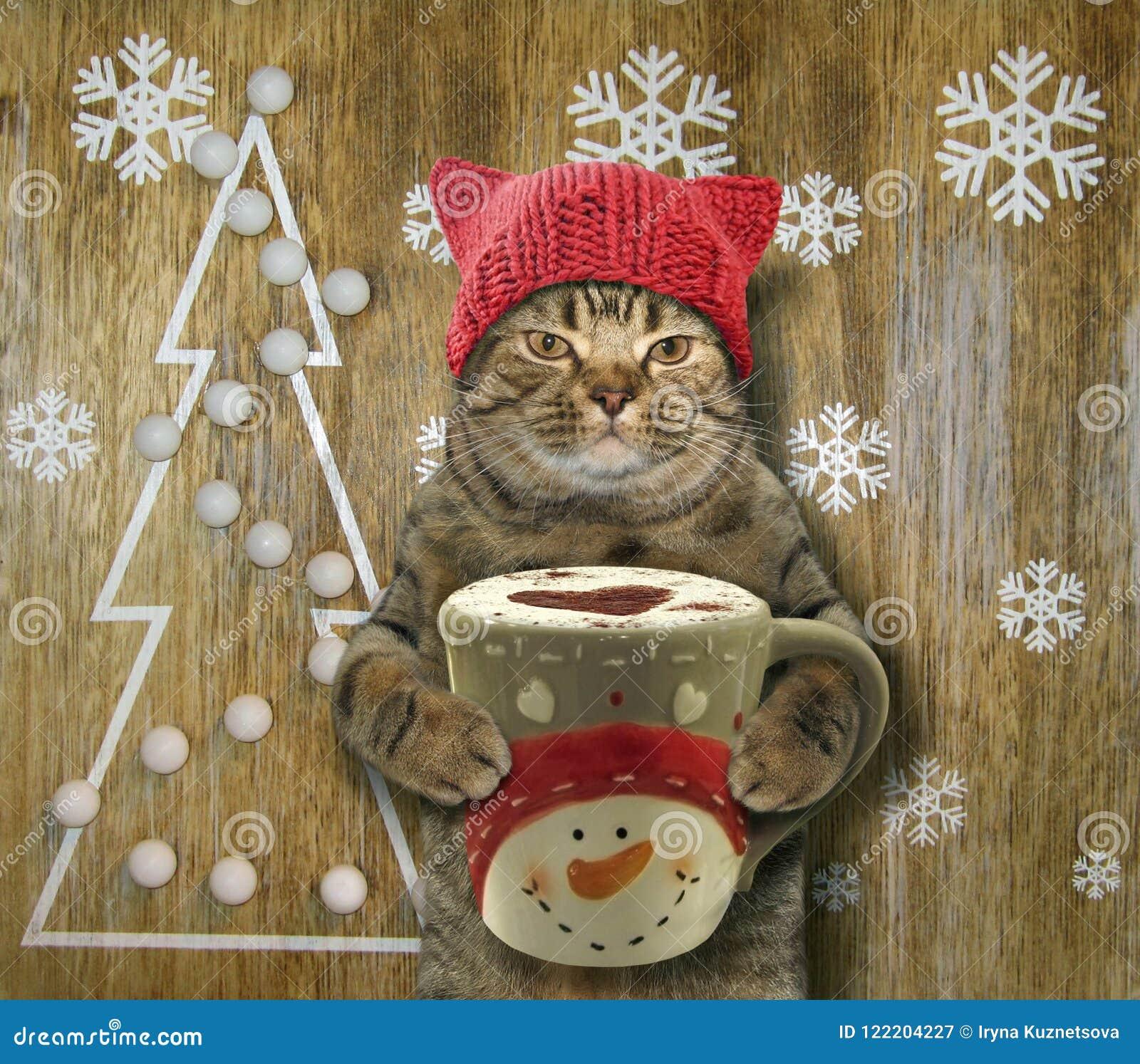 Katze mit Kaffee und Weihnachten