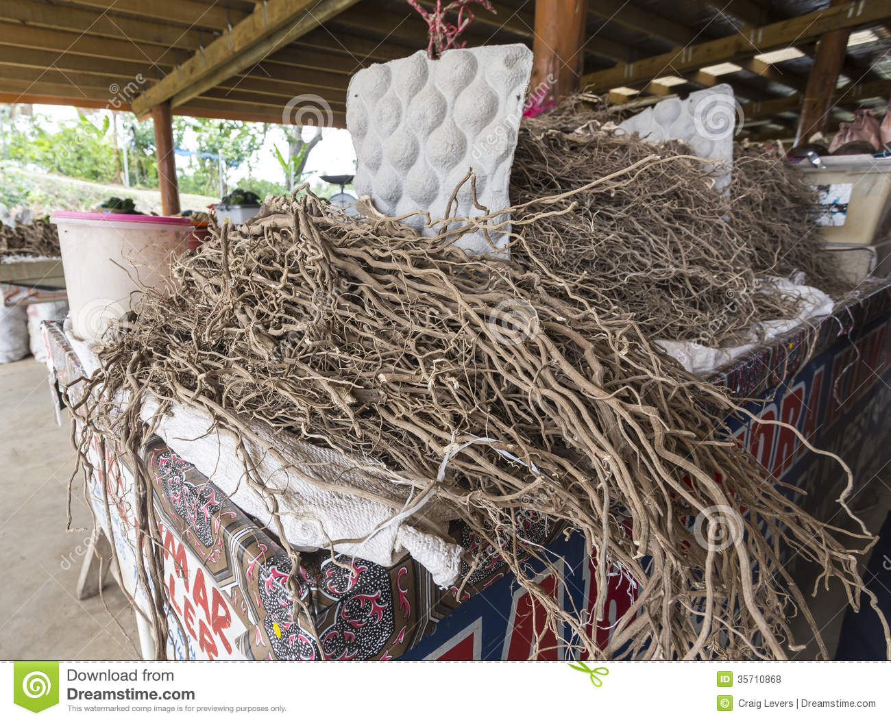 How To Make Kava From Dried Root
