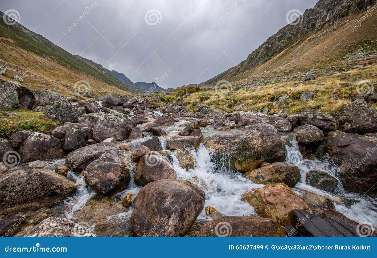 Kavrun Upland, Çamlıhemşin, Rize, Turkey