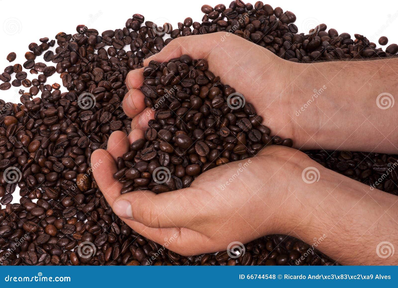 Kawa trzymająca w rękach