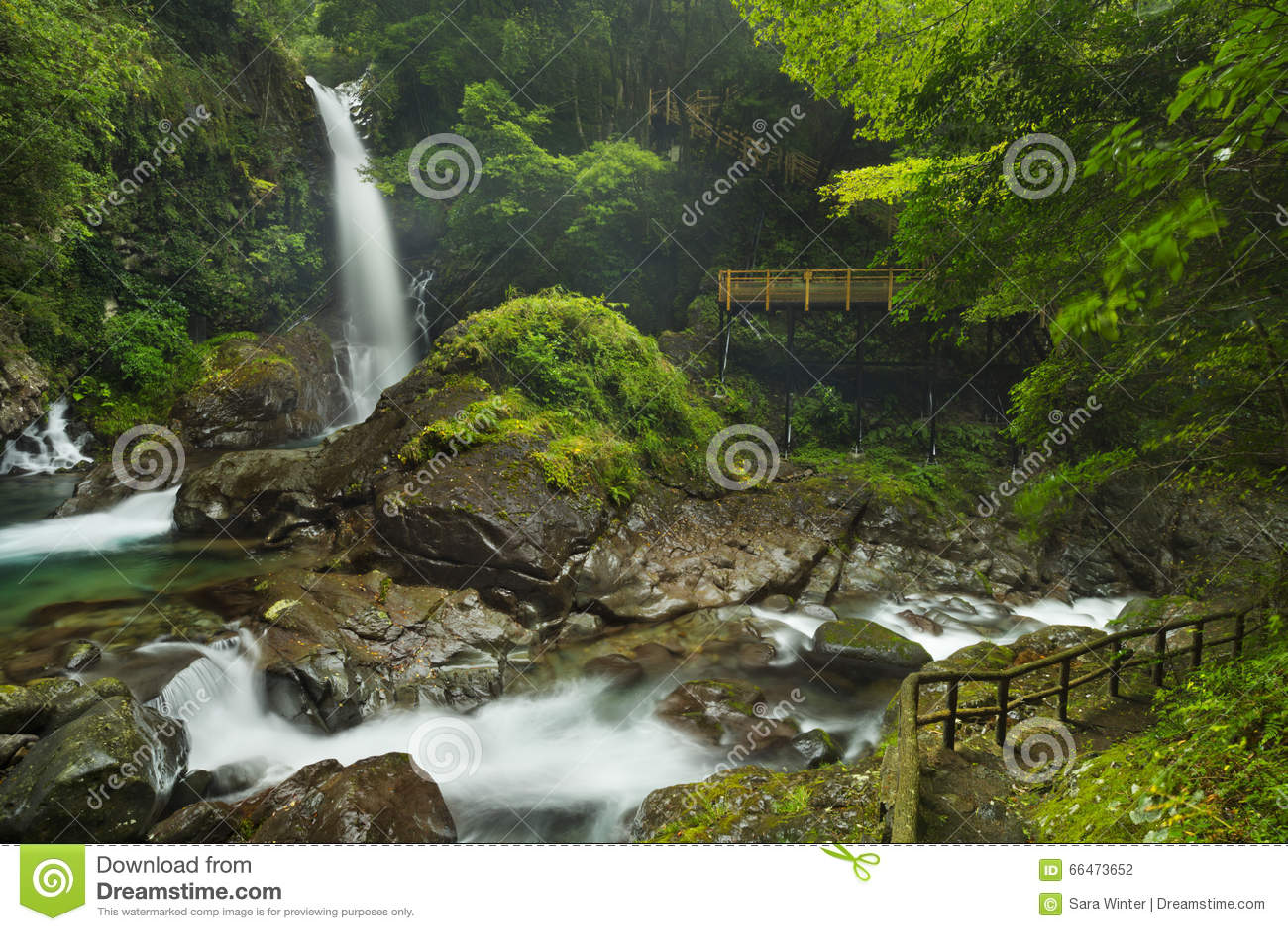 Kawazu waterfall trail, Izu Peninsula, Japan
