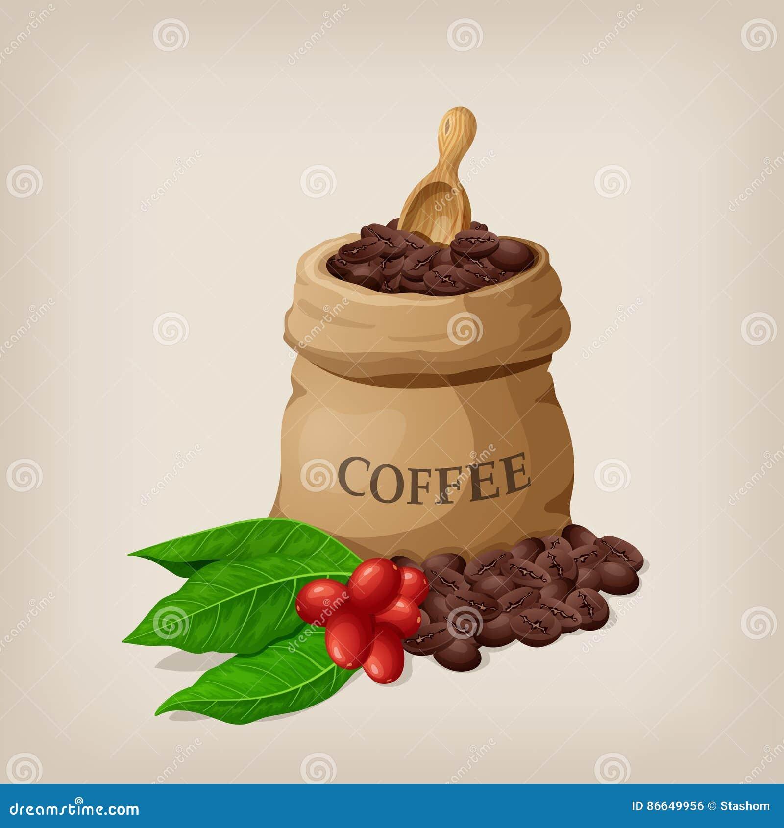 Kawowa torba z fasolami w kanwa worku i kawa rozgałęziamy się z liśćmi