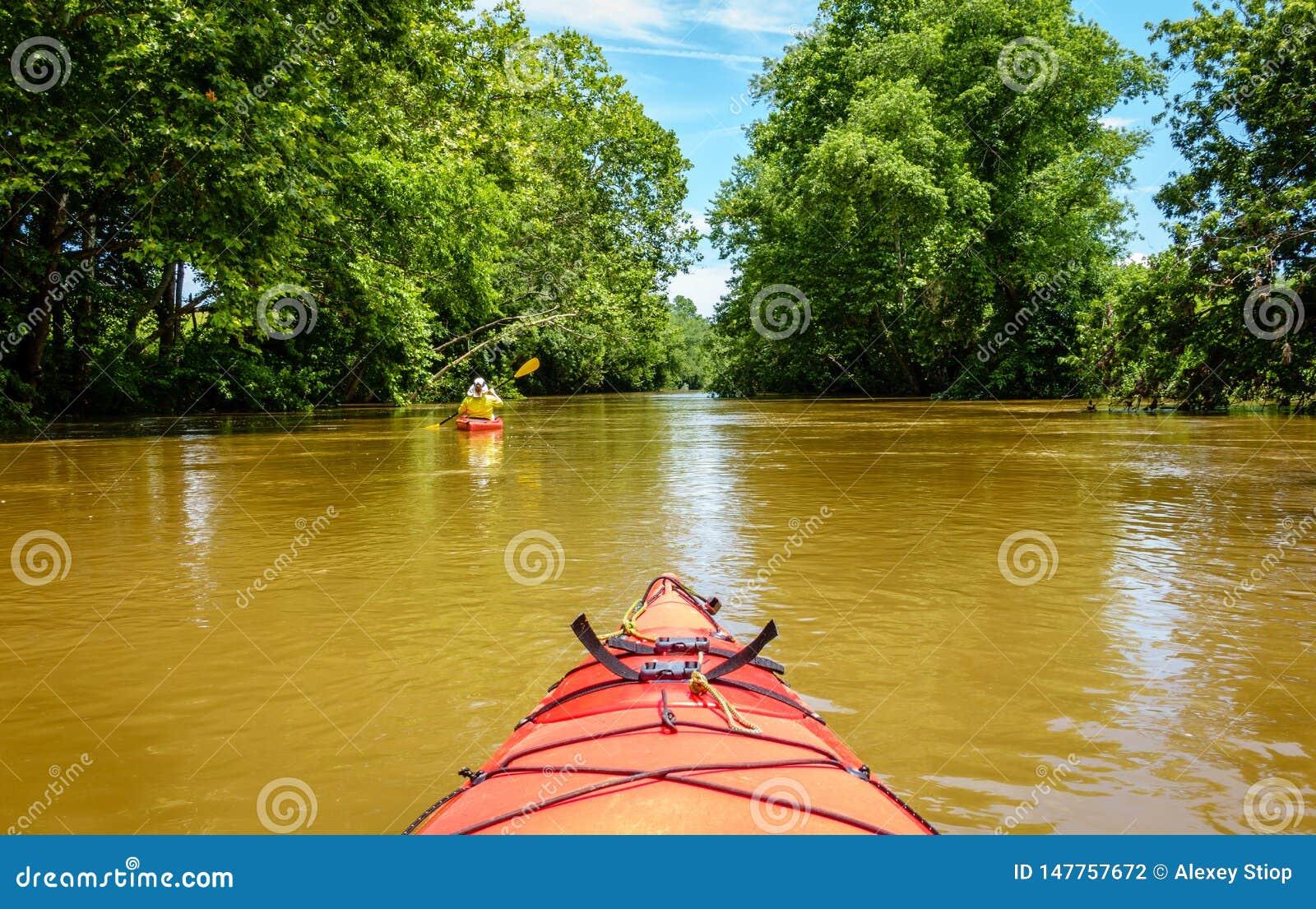 Kayaking na zatoczce w Środkowym Kentucky
