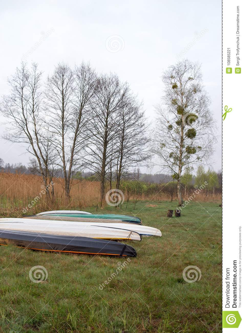 Kayaks of water tourists during a halt in the camp. Dry reed and swampy terrain of Volyn in May. Spring in Europe