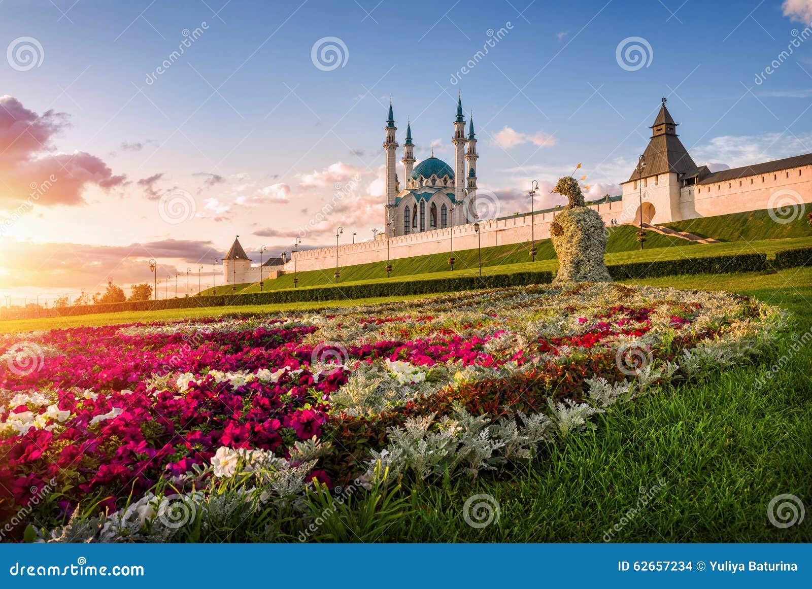 Kazan kwiatu paw