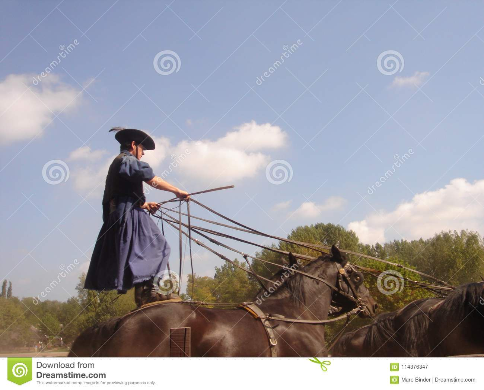 Kecskemét, Bà ¡电缆敷设船Kiskun县,匈牙利:与传统马展示的巨大简单的Puszta游览
