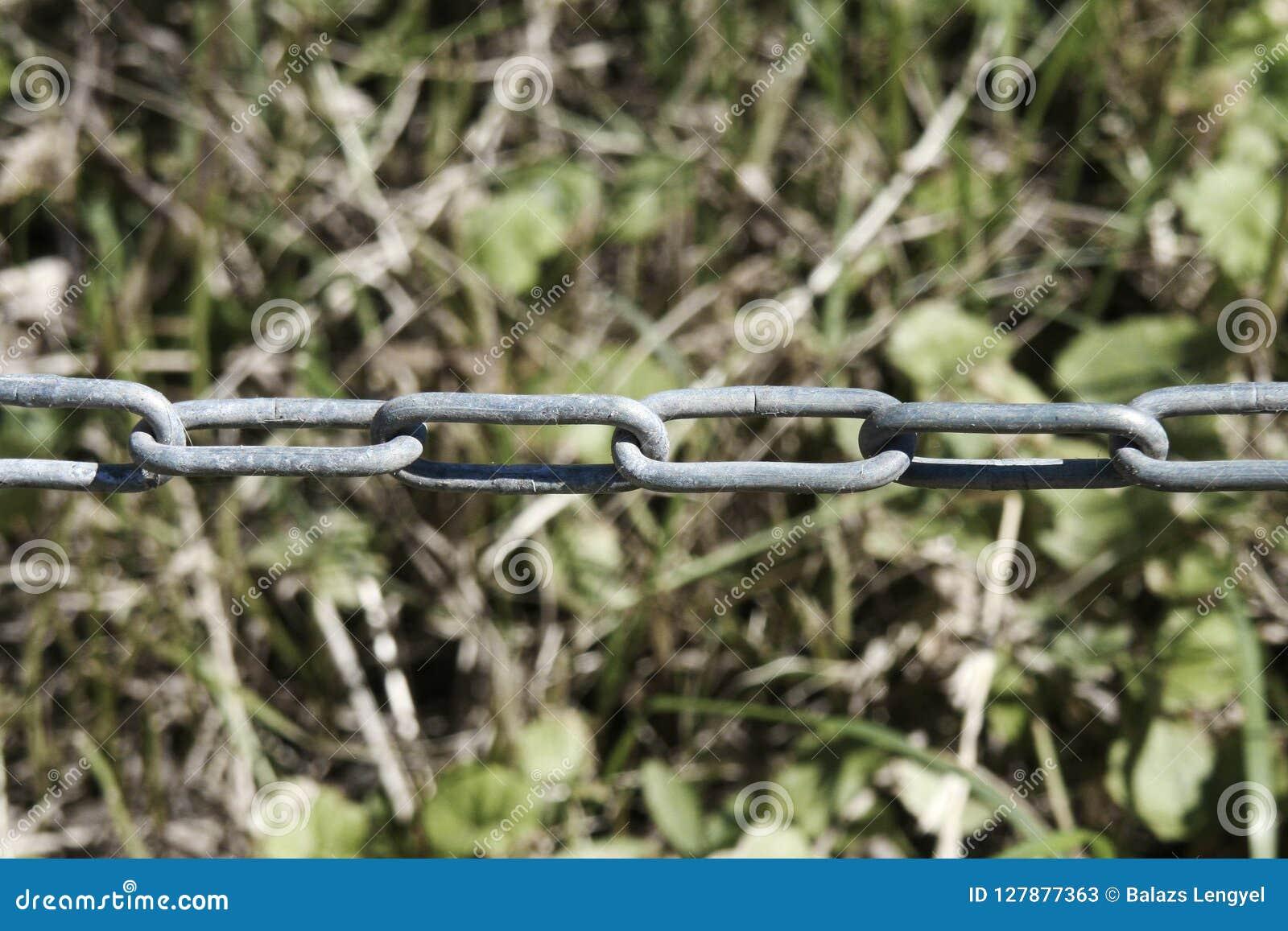 Kedja med oskarp gräsbakgrund kedjan är en seriell enhetsnolla