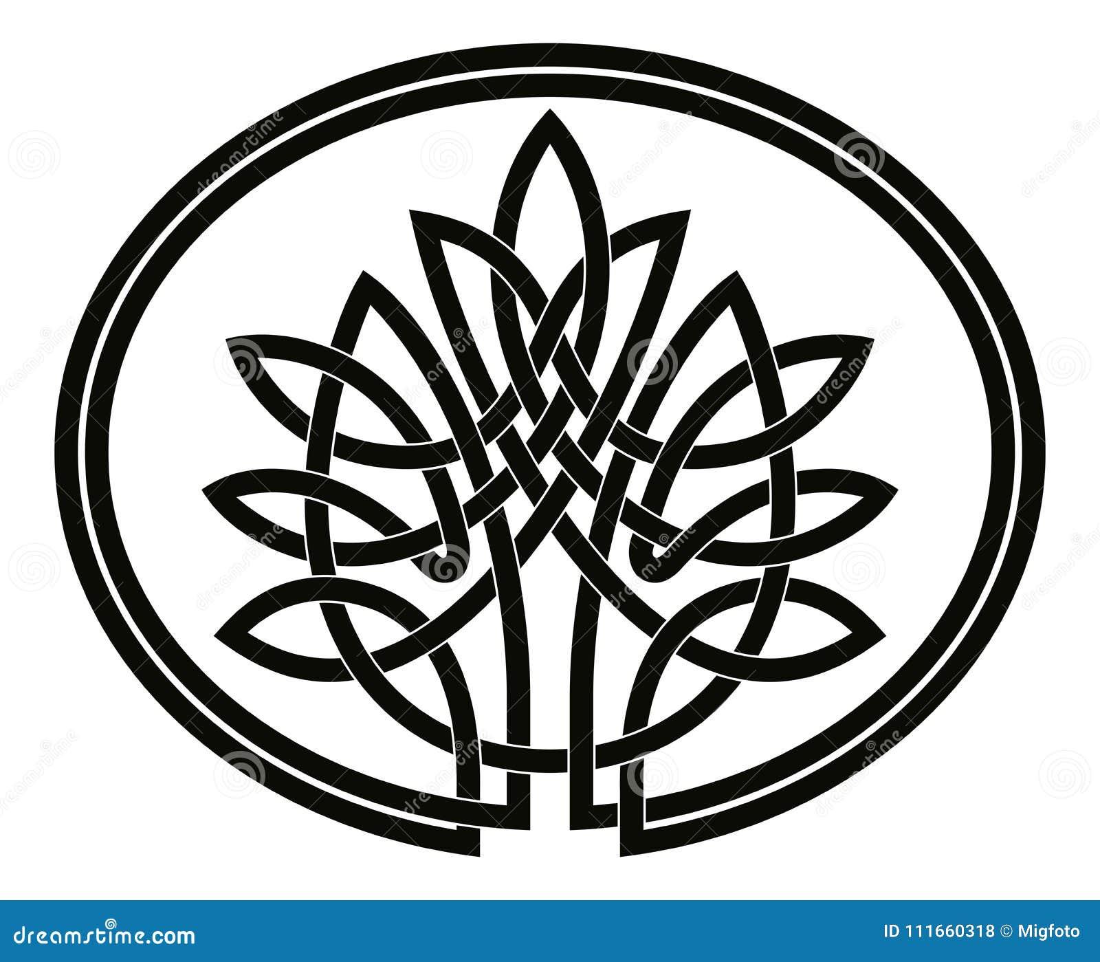 Keltischer Baum Des Lebens Vektor Abbildung Illustration Von