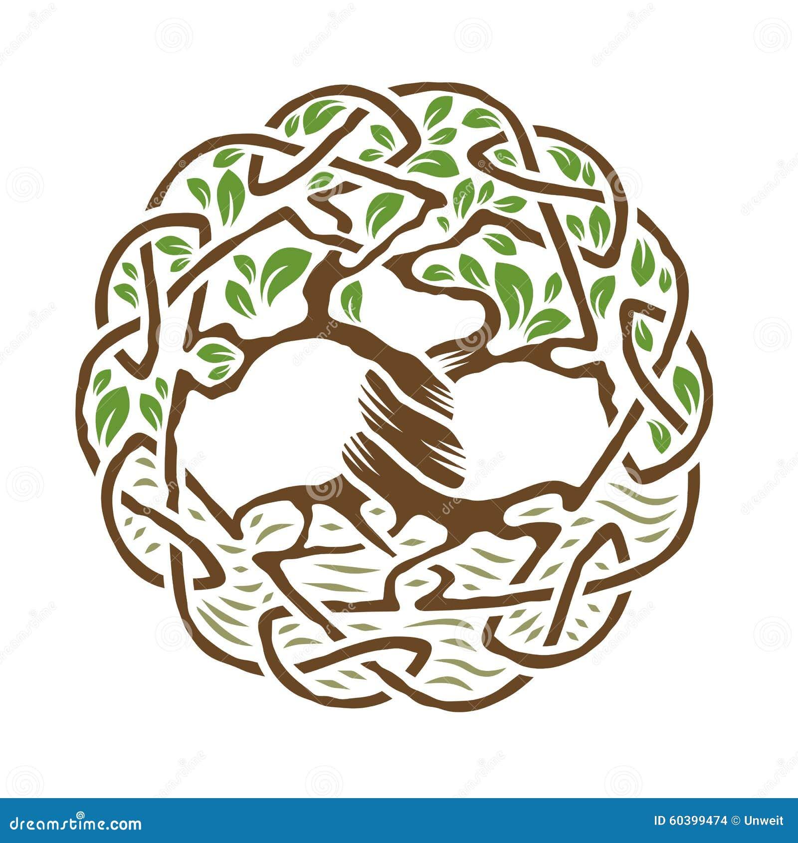 Keltischer Baum Des Lebens Vektor Abbildung Illustration Von Bild