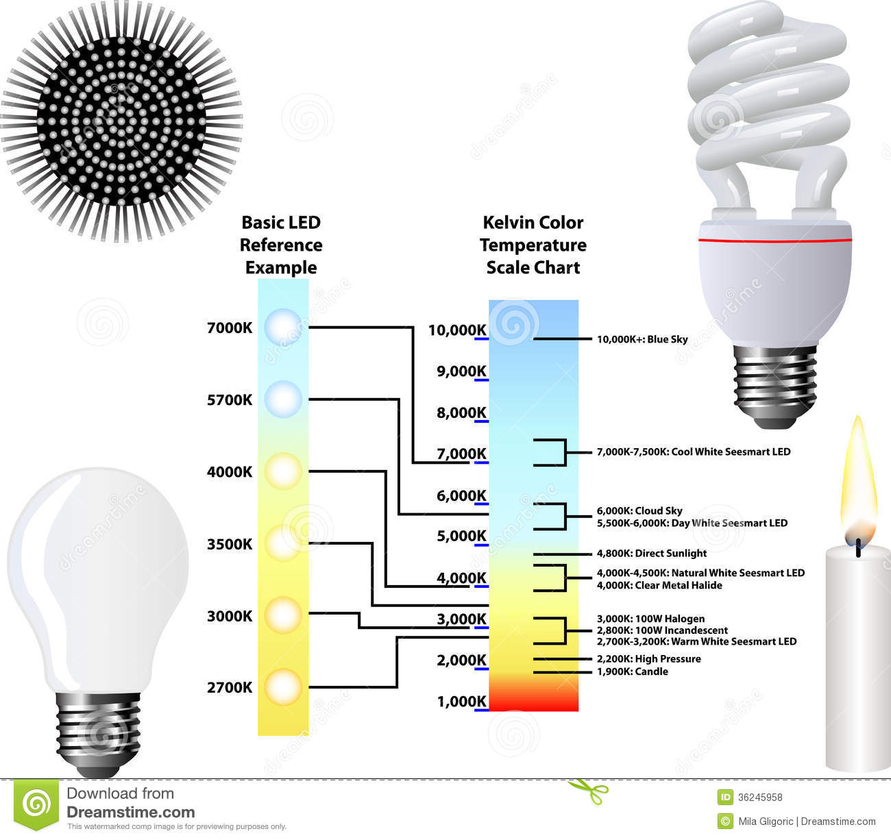 Kelvin Color Temperature Scale Chart Stock Photo Image