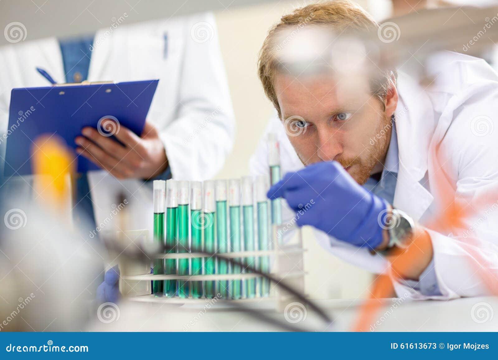 Kemist som kontrollerar flytande från provröret