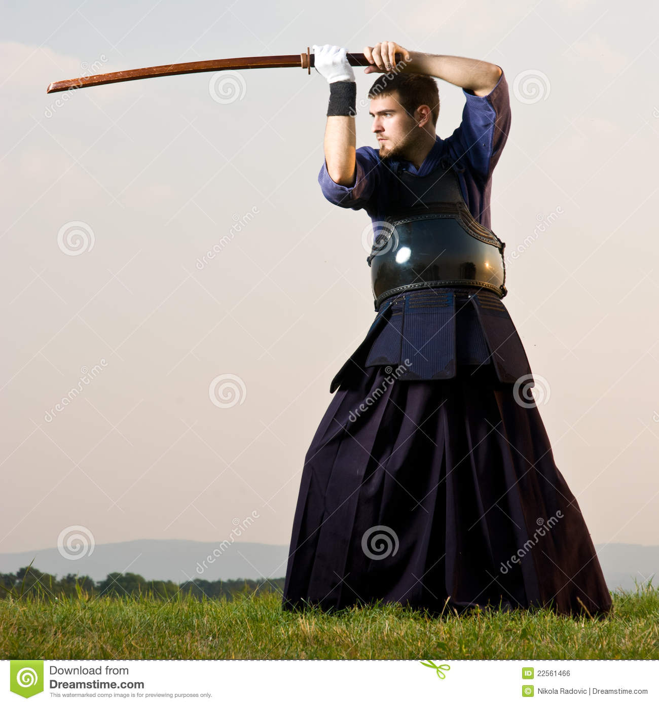 Kendo Expert Royalty Free Stock Image - Image: 22561466