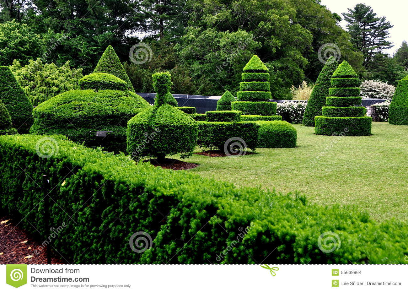 Kennett Square, PA: Longwood Gardens Topiary Trees