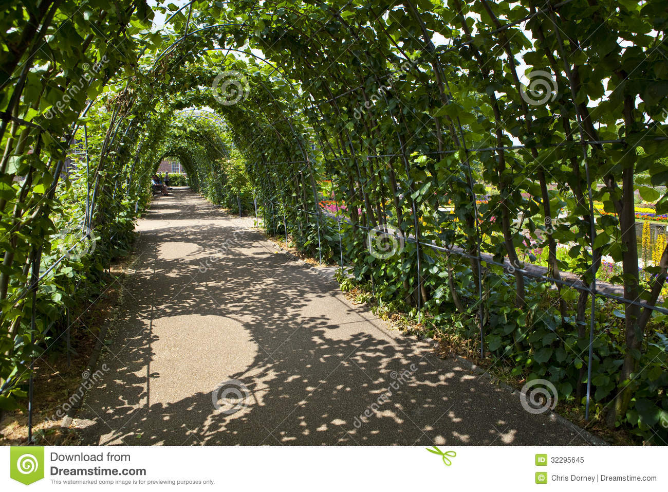 Kensington gardens in london royalty free stock photo for Garden trees london
