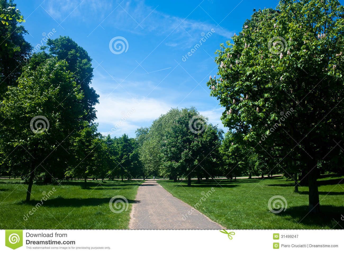 Kensington gardens in london royalty free stock for Garden trees london