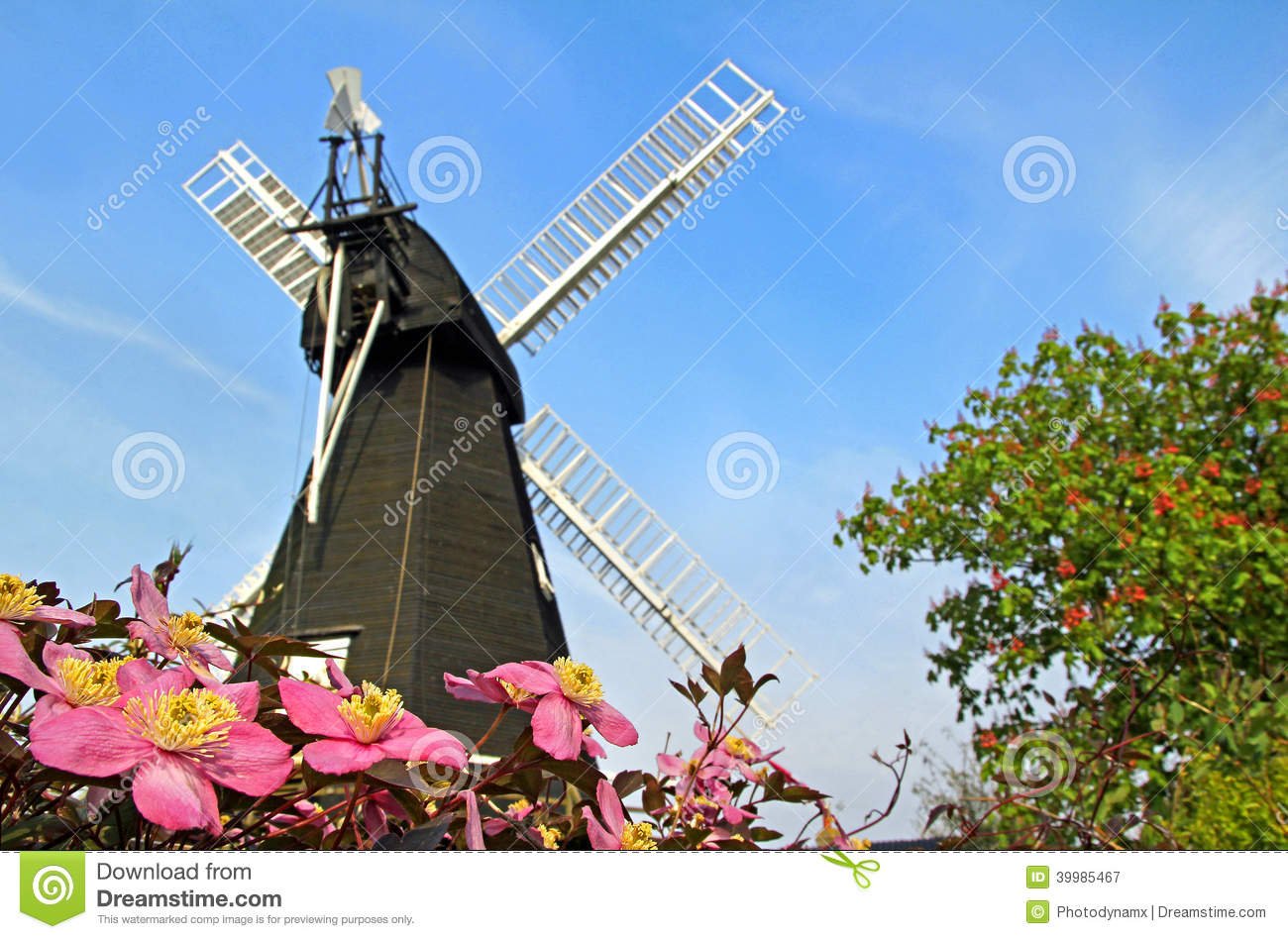 kent windmill and clematis flowers