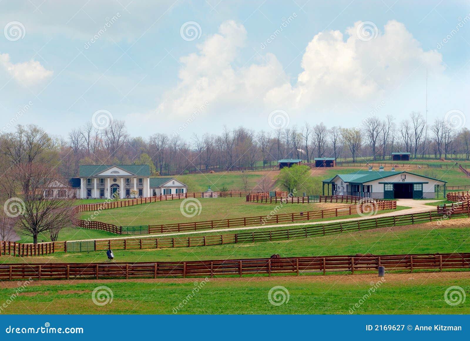 King Ranch Texas >> Kentucky Horse Ranch stock image. Image of farm ...