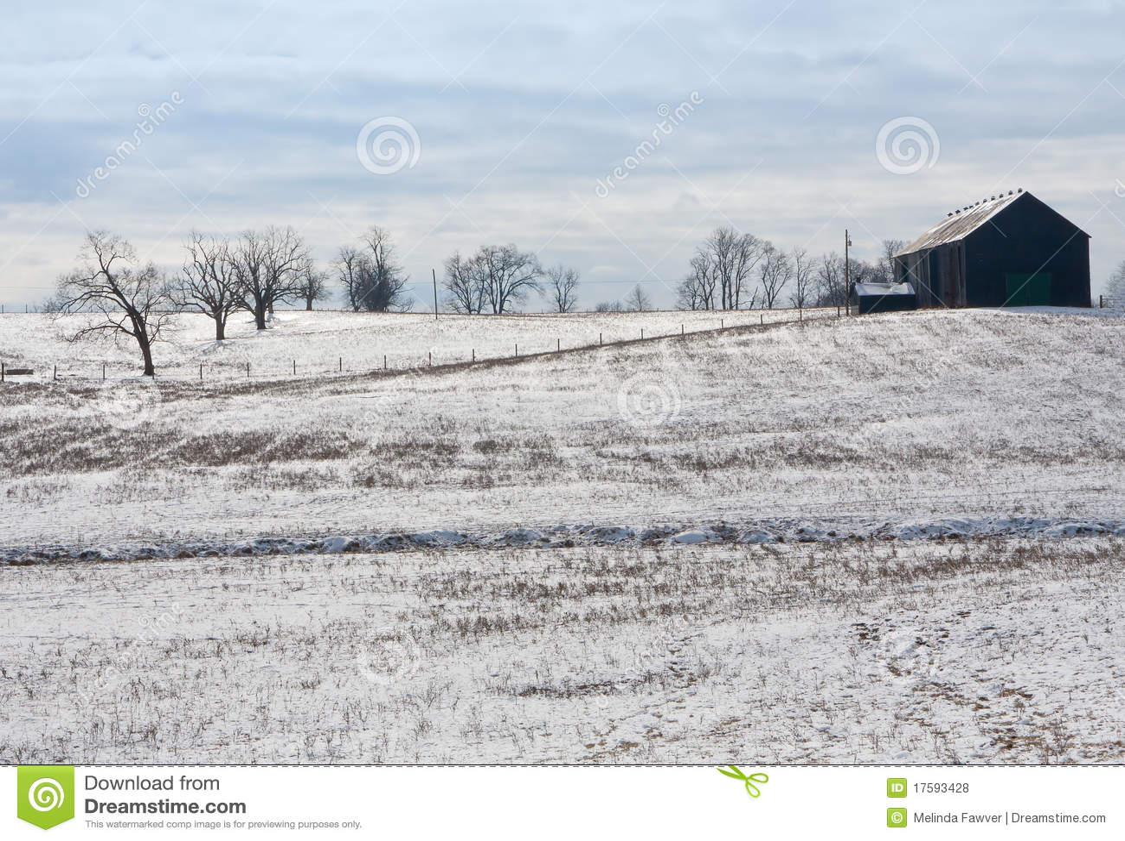 Kentucky-Winter