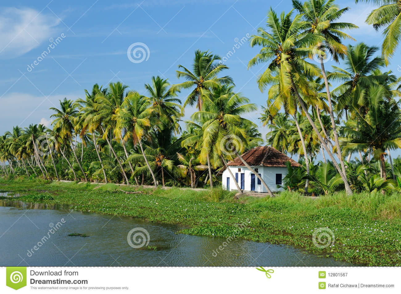 Download Kerala canal stock image. Image of environment, canal - 12801567