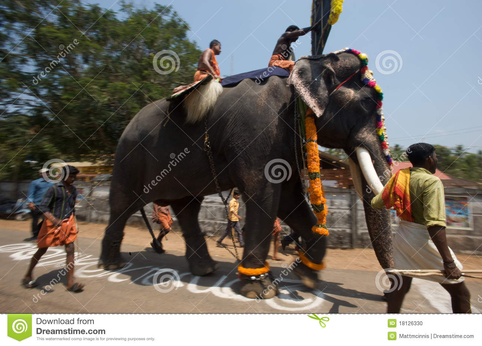 Kerala Elephant Festival Stock Images 190 Photos