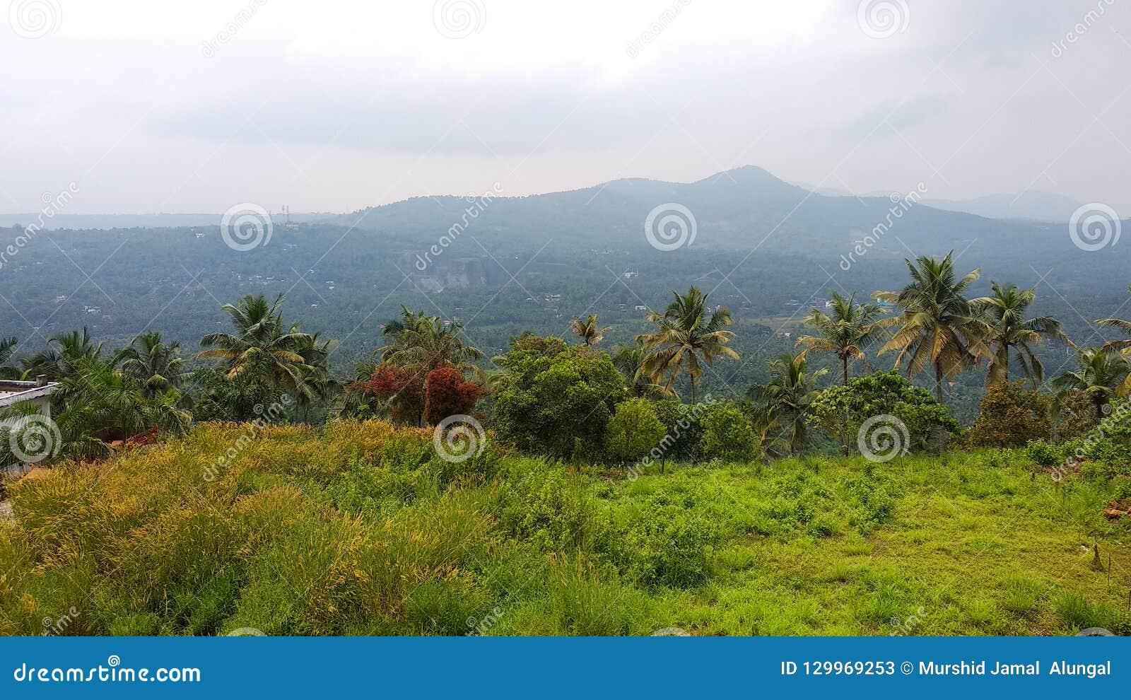 Kerala natura