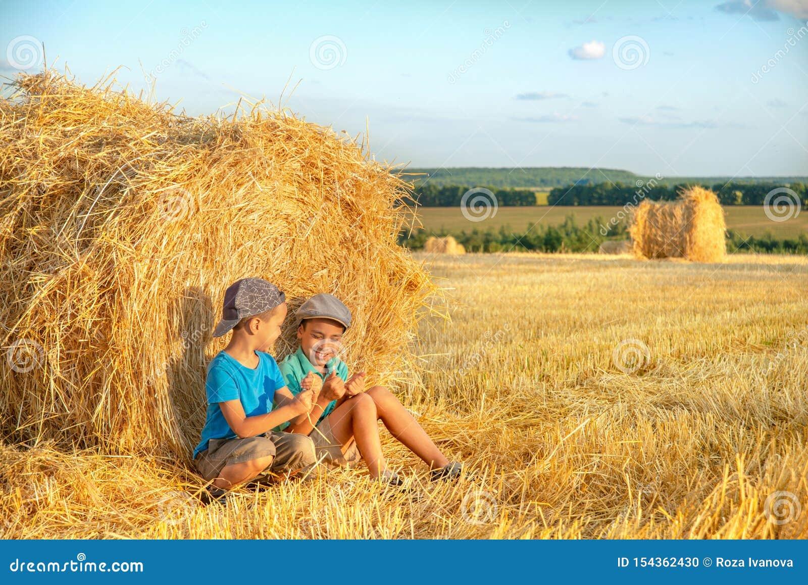 ?kerbrukt sk?rdbegrepp Två pojkar har gyckel att sitta på en höstack i ett fält på en solig dag och meddelar