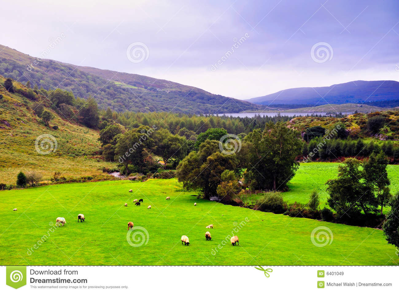 Kerry landscape royalty free stock images image 6401049 for Garden design kerry
