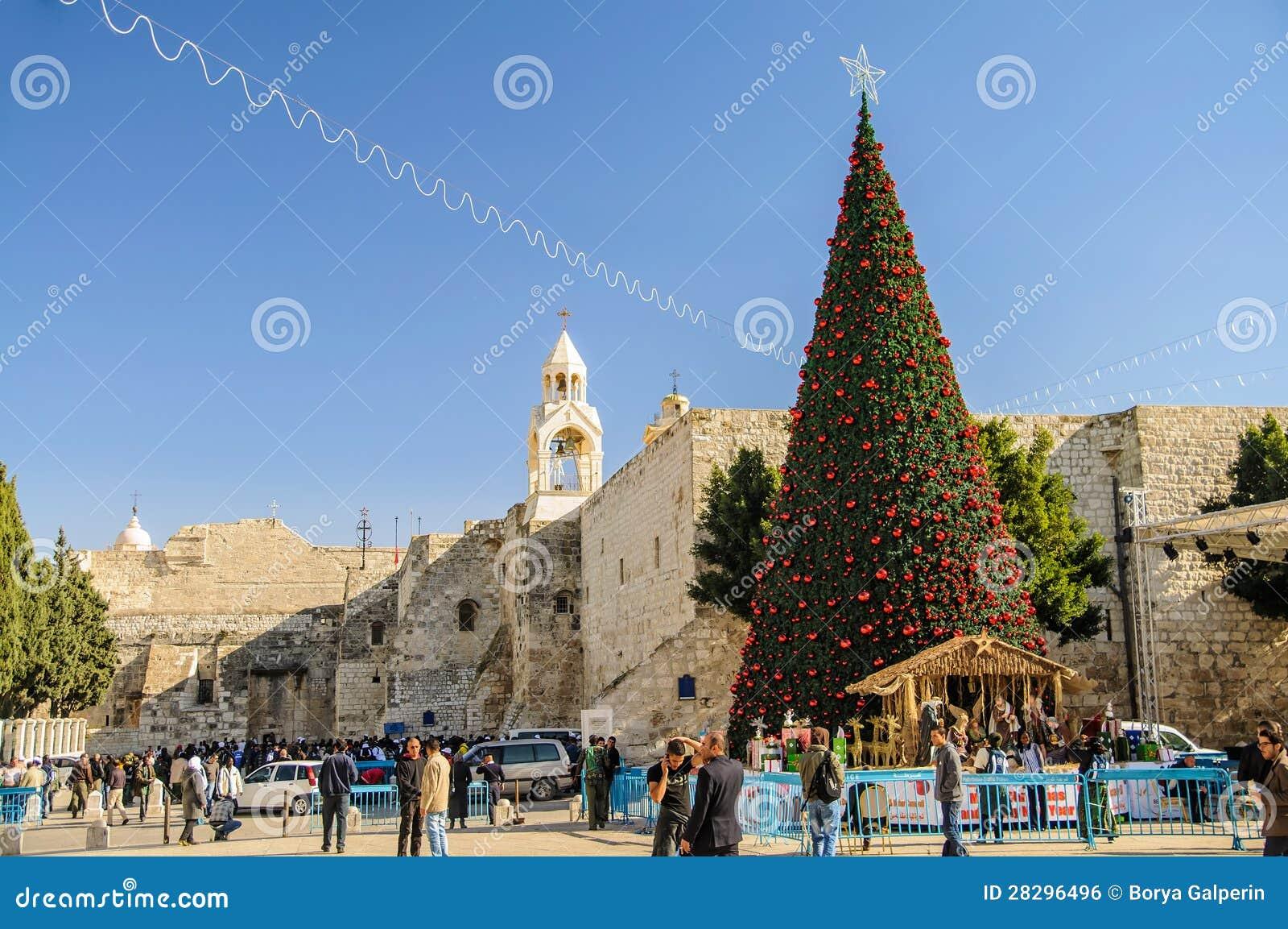 Kerstboom dichtbij de kerk van de Geboorte van Christus, Bethlehem