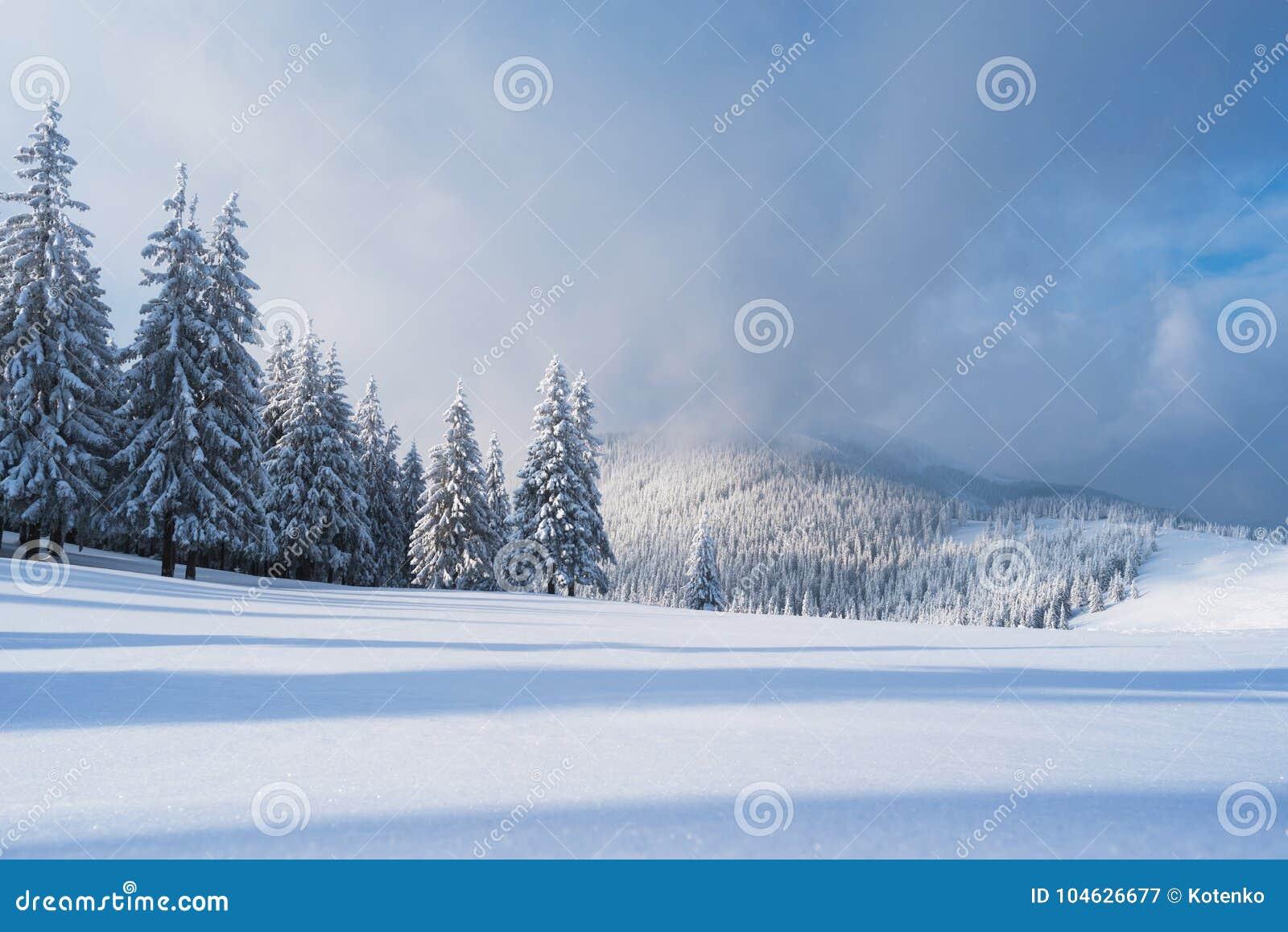 Download Kerstmislandschap Met Sparren In De Bergen Stock Afbeelding - Afbeelding bestaande uit spar, achtergrond: 104626677