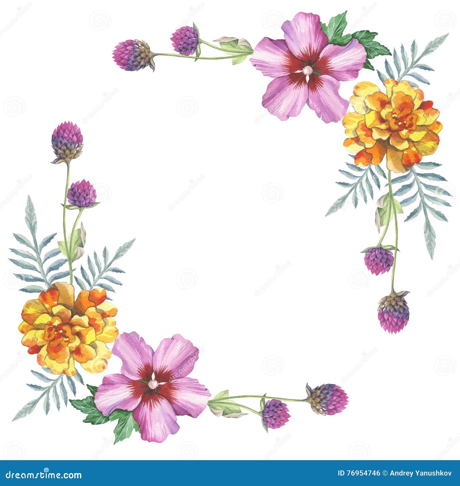 ketmie rose et ornement de cadre de guirlande de fleur de