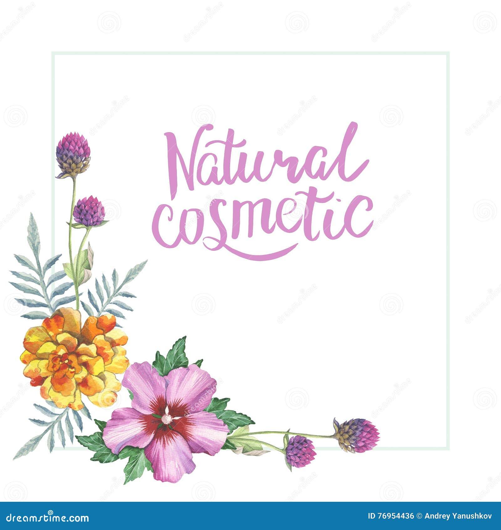 Ketmie souci jaune rose et ornement de cadre de guirlande de fleur de gomphr - Guirlandes de fleurs ...