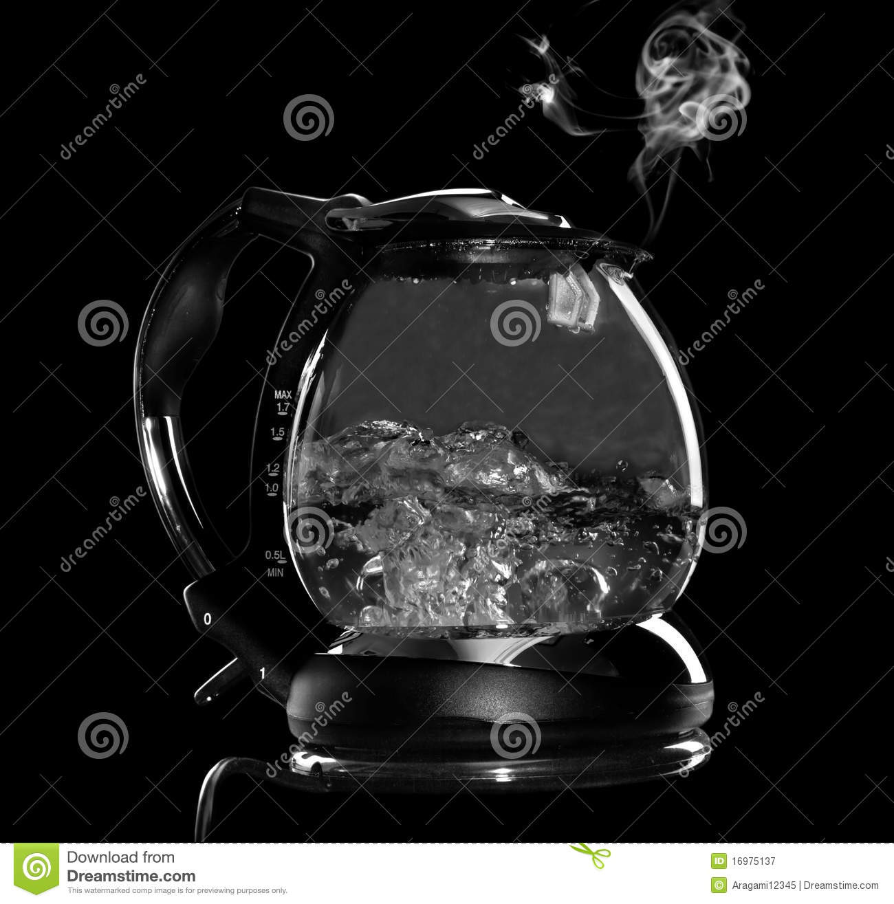 Boiling Water Steam Kettle with boiling water and