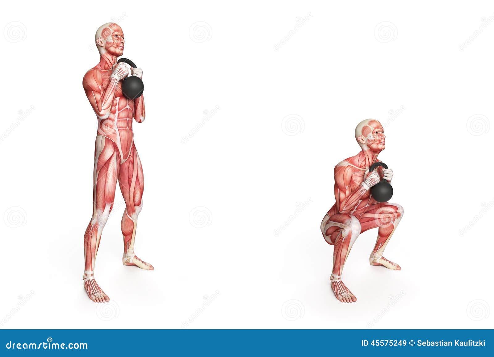 Kettlebell Exercise Stock Illustration - Image: 45575249