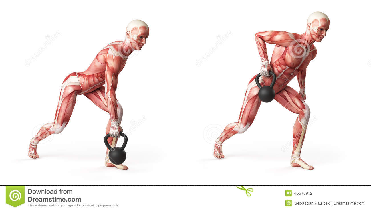 Kettlebell Exercise Stock Illustration - Image: 45576812