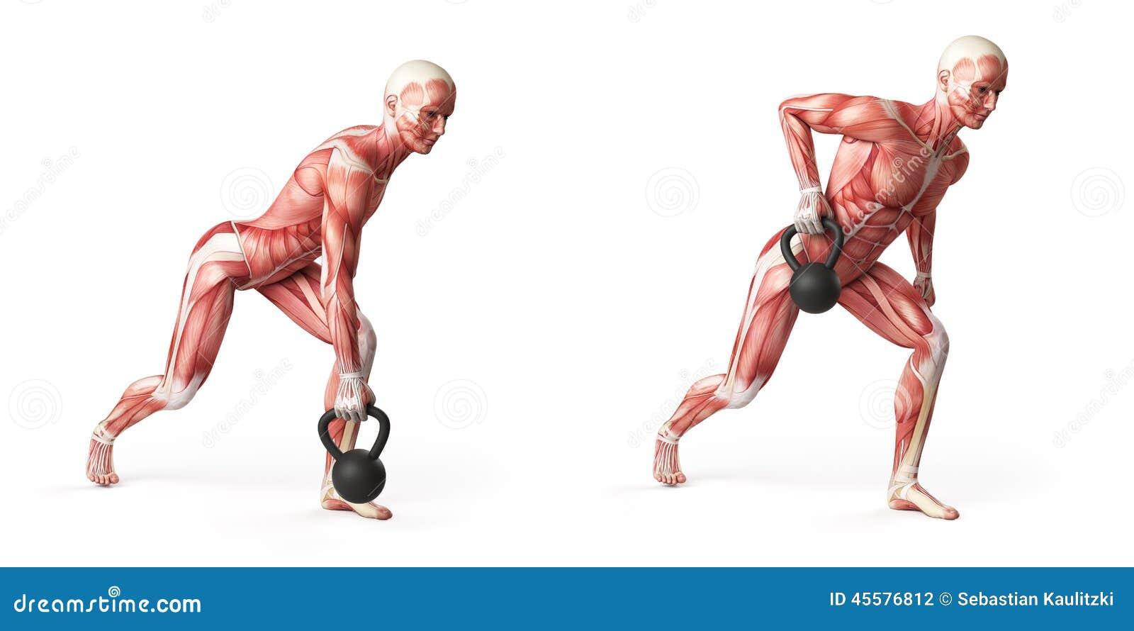 Kettlebell exercise stock illustration. Illustration of free - 45576812
