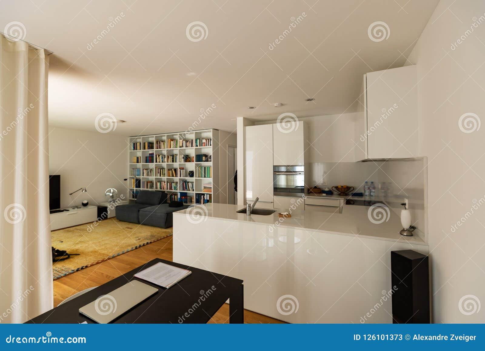 Keuken En Woonkamer Samen Grote Ruimte Stock Afbeelding Afbeelding Bestaande Uit Keuken Open 126101373