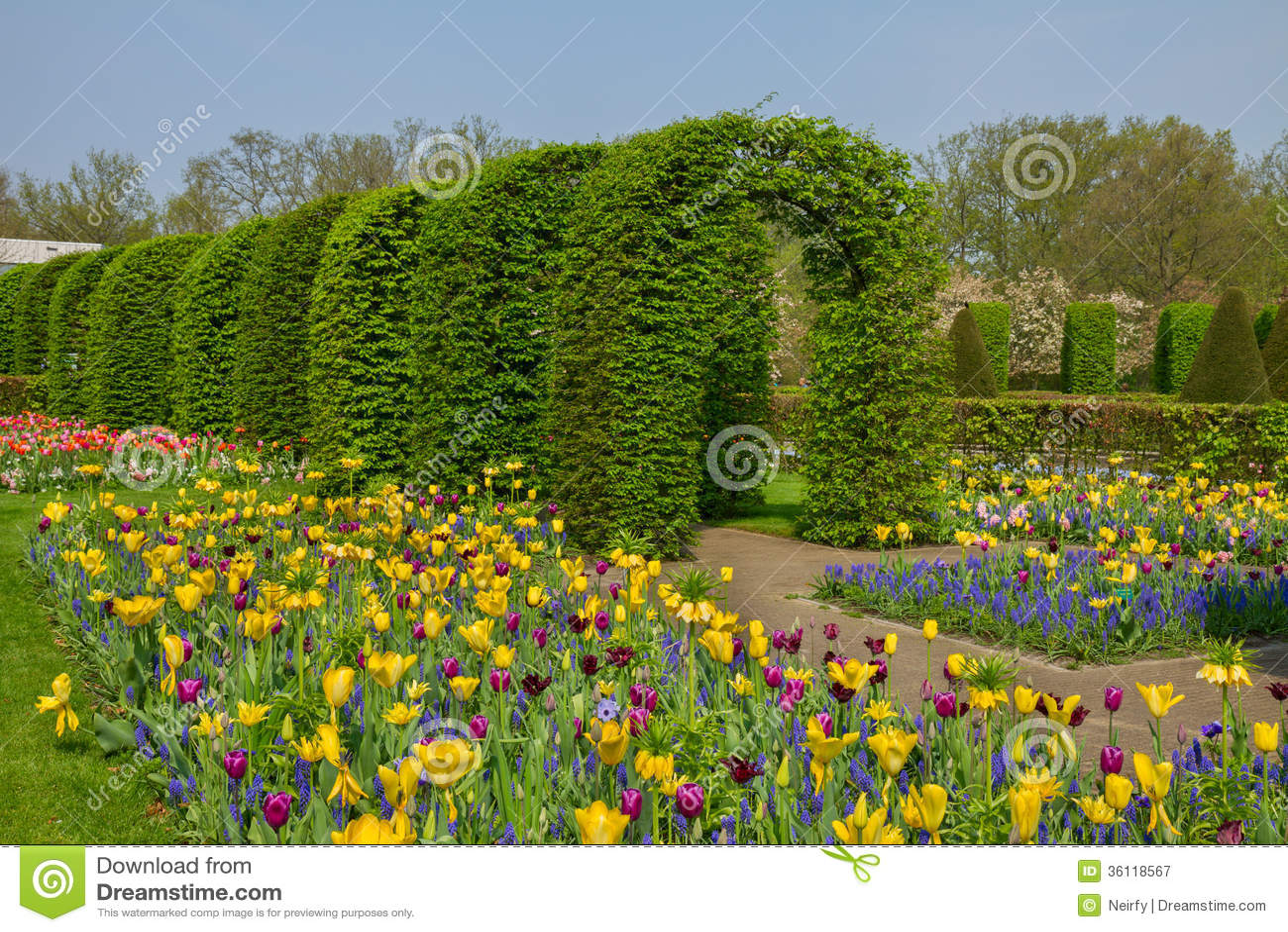 Keukenhof Garden At Sunny Day Netherlands Royalty Free