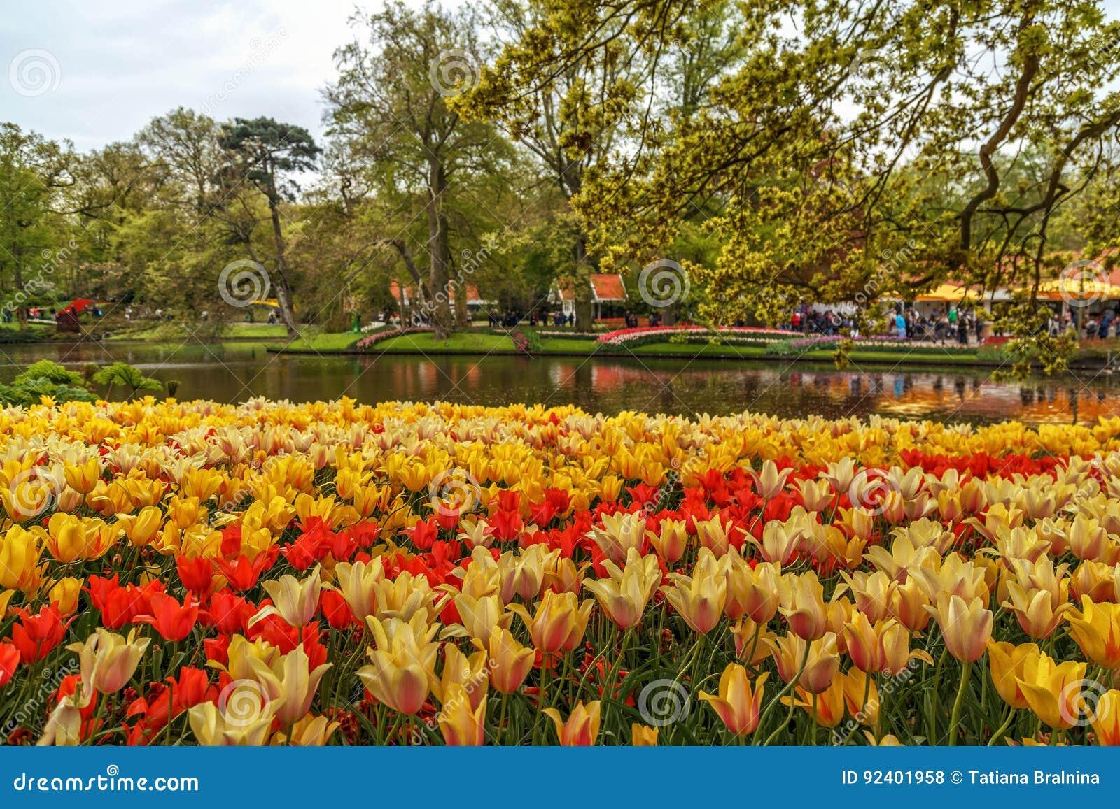 Keukenhof, Lisse, Netherlands, May 2017. Editorial Stock Photo ...