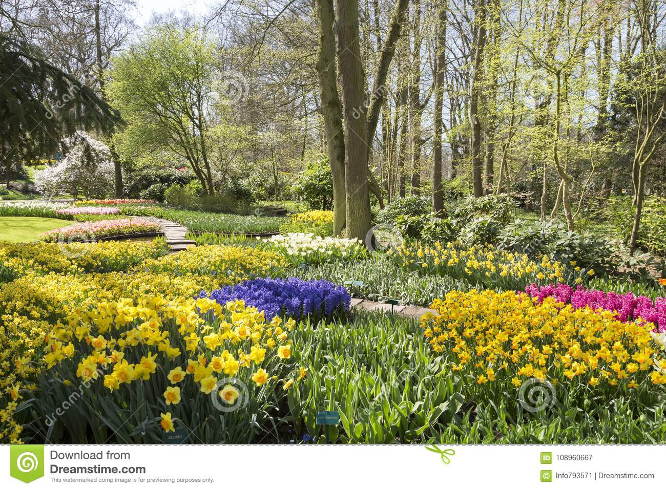 Keukenhof overview in springtime with a lot of flowers landscape