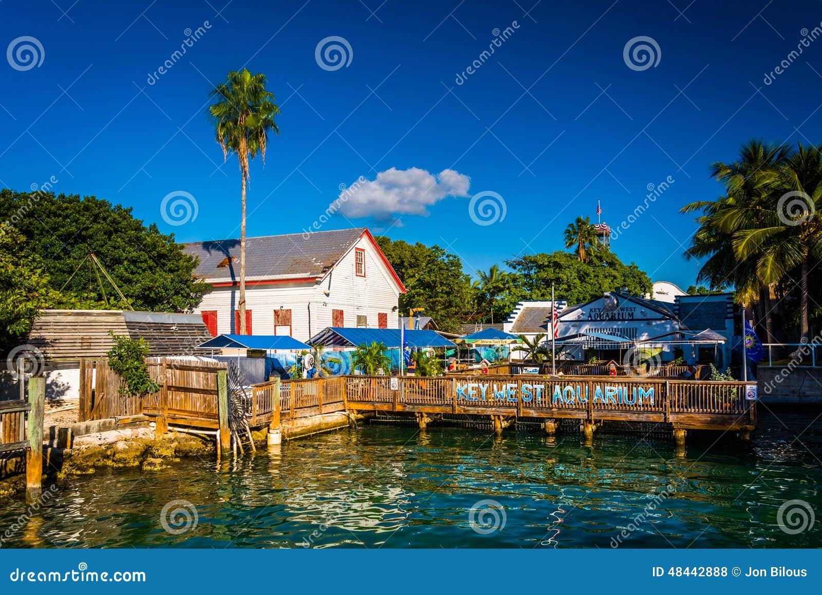 The Key West Aquarium In Key West Florida Editorial Stock Photo Image 48442888
