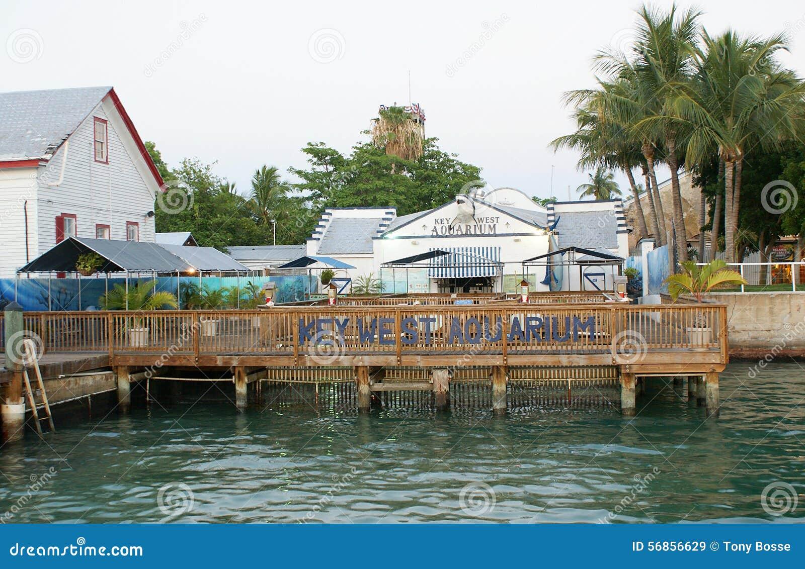 Key West Aquarium Editorial Stock Image Image 56856629