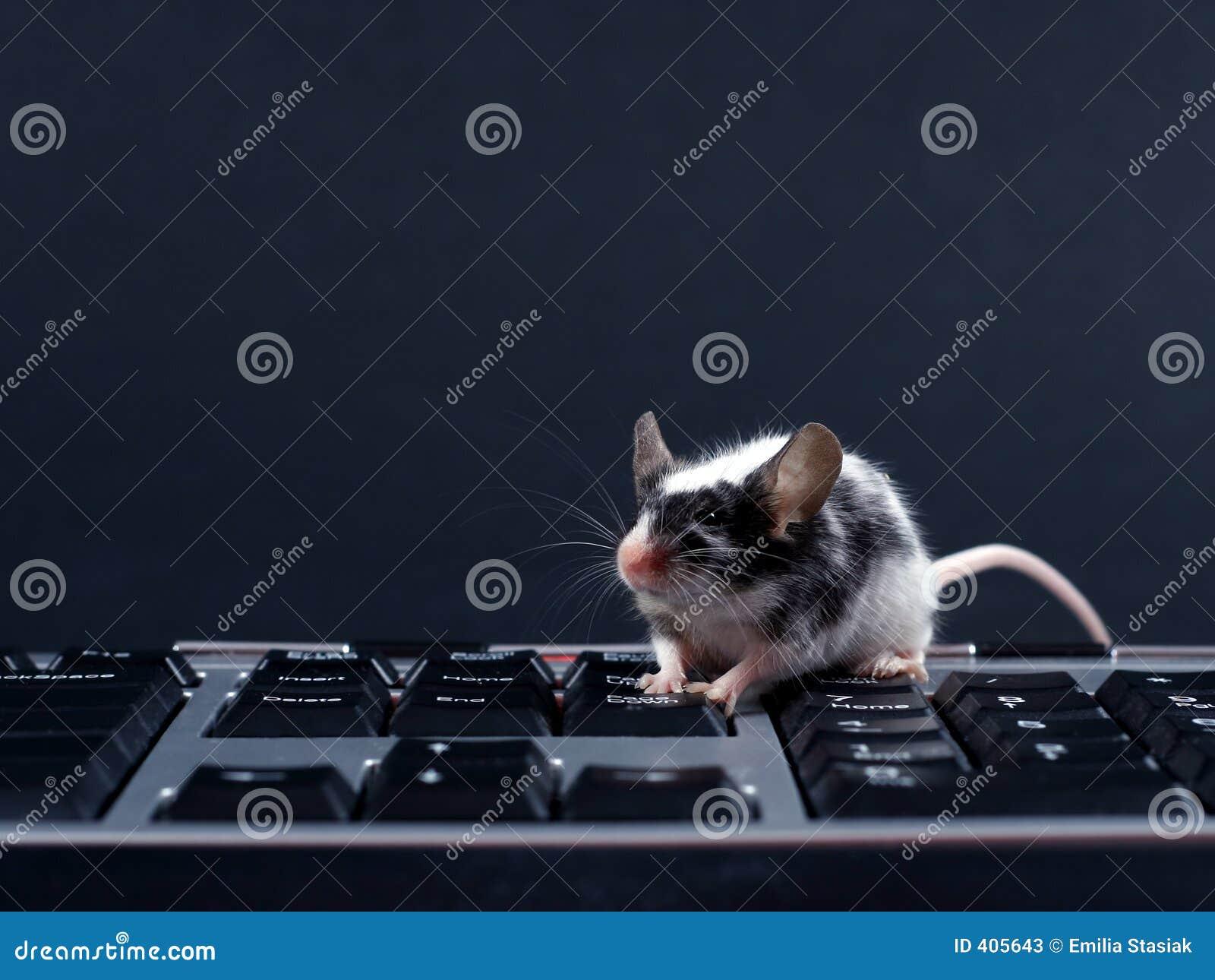 Keybord ποντίκι