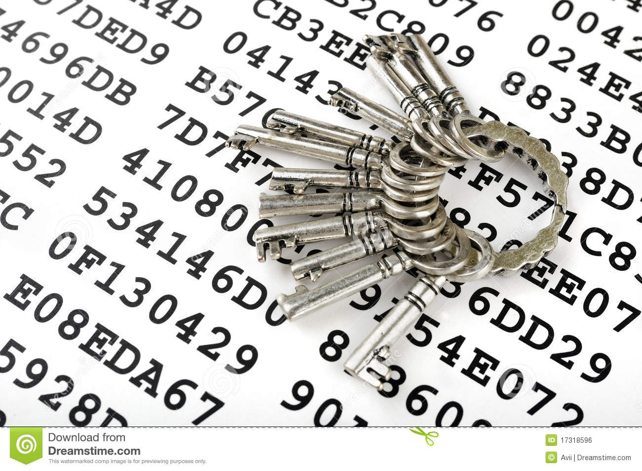 Keys on a sheet with encrypted data