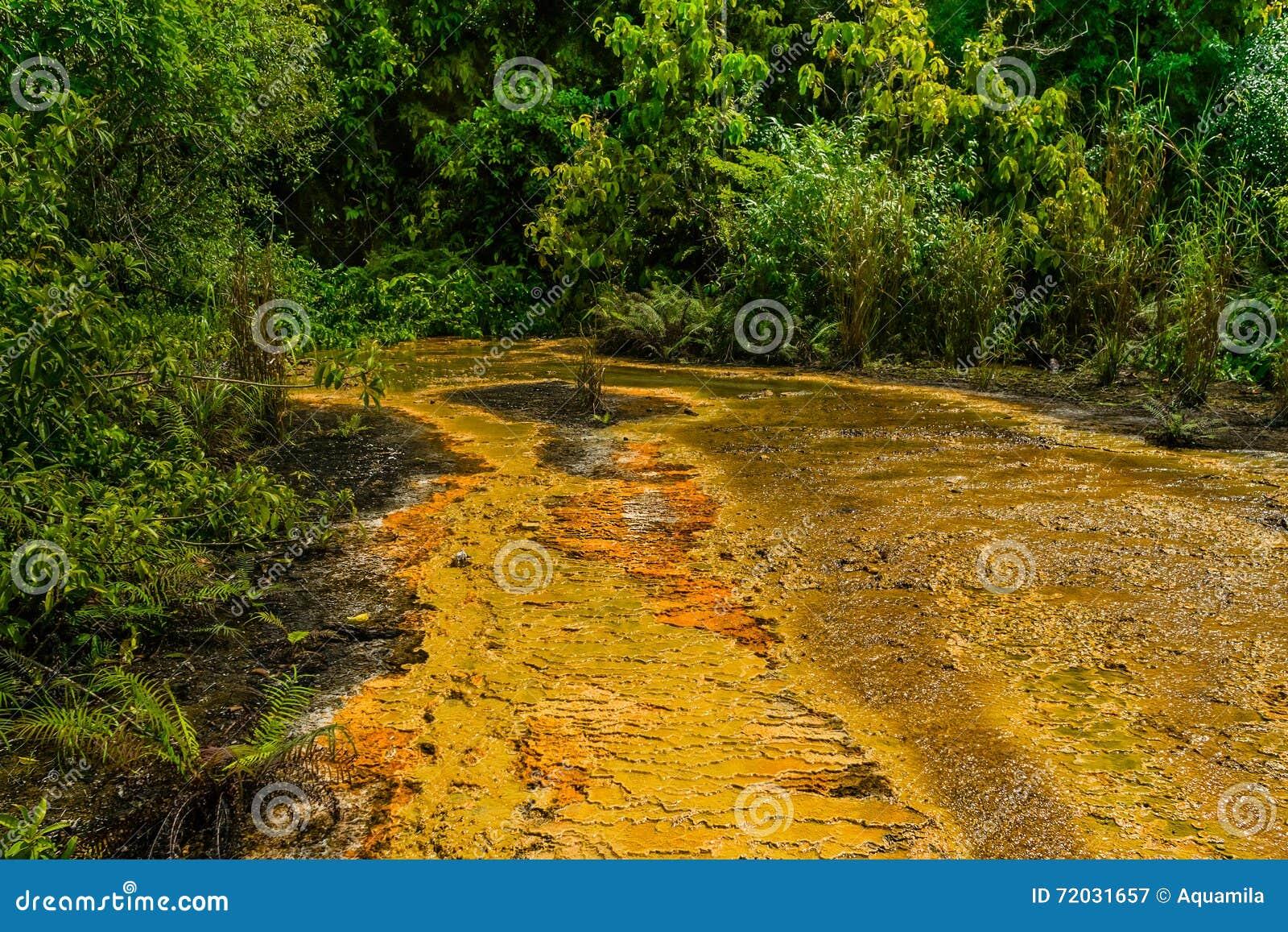 Khao Pra Bang Khram Wildlife Sanctuary, way to Emerald Pool aka Sa Morakot, tourist destination. Green tropical forest