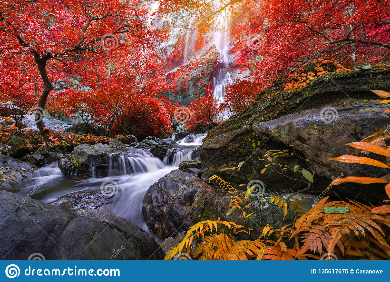 Khlong Lan瀑布是美丽的瀑布在雨林密林泰国